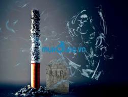 Cách loại bỏ thuốc lá dễ dàng, an toàn, hiệu quả nhất